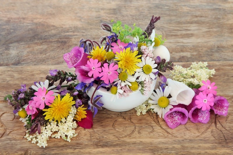 Image of Develop your flower power in our new floristry course!