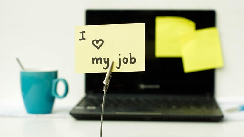 Image of 3 Top tips to land your perfect career