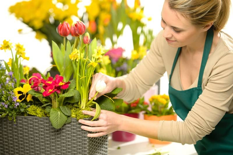 Image of Careers Advice - How to Become a Florist