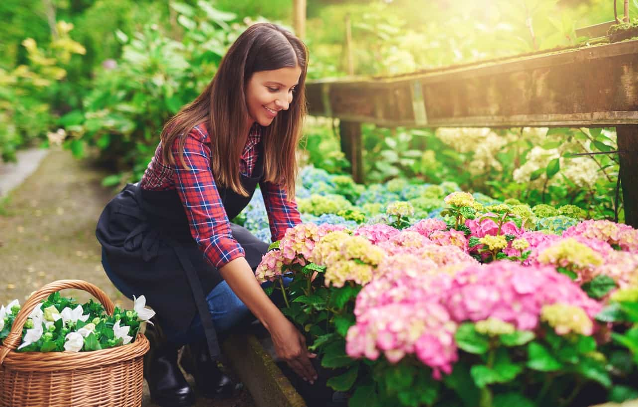 Image of Passionate about the outdoors? You should study Garden Design