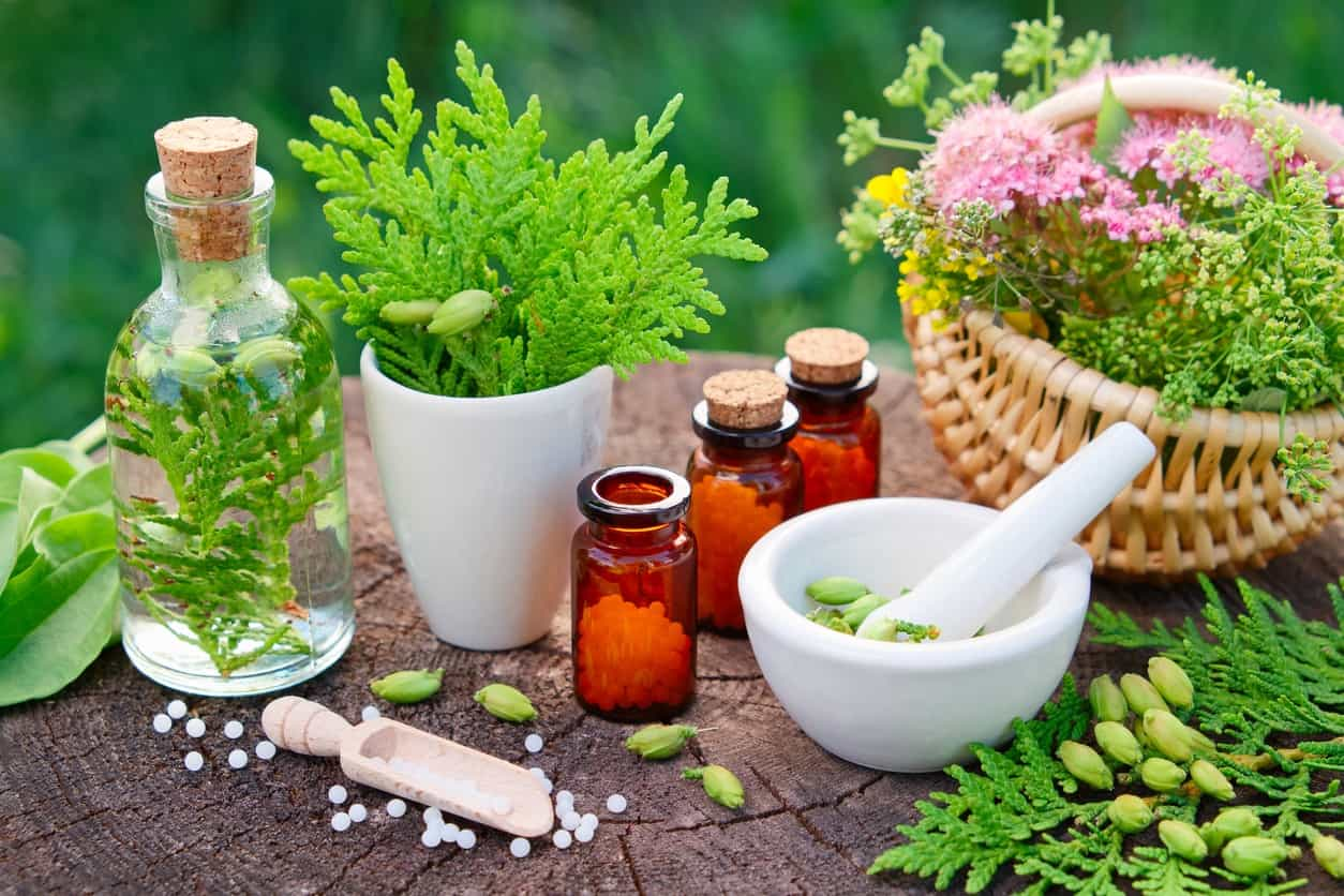 Image of How Our Homeopathy Course Can Help Your Career